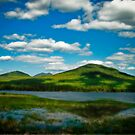 Spring in the Bigelow Mountains by Alana Ranney