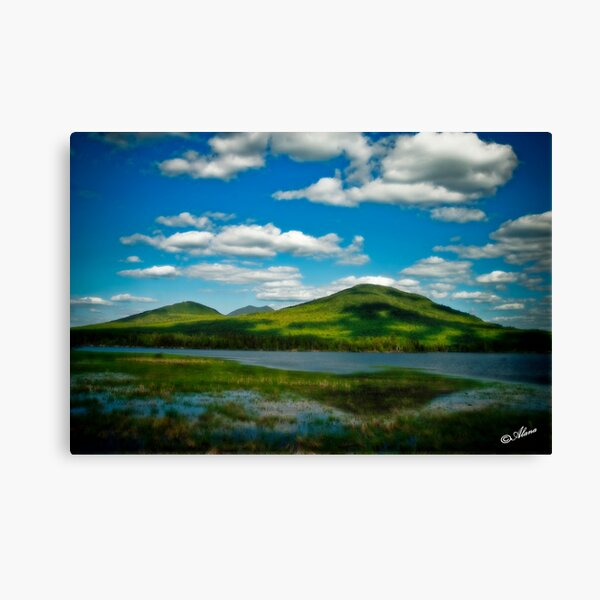 Spring in the Bigelow Mountains Canvas Print