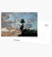 High palms Postcards