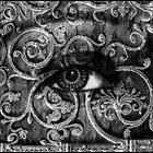 Visions In The Dark #3 by Elizabeth Burton