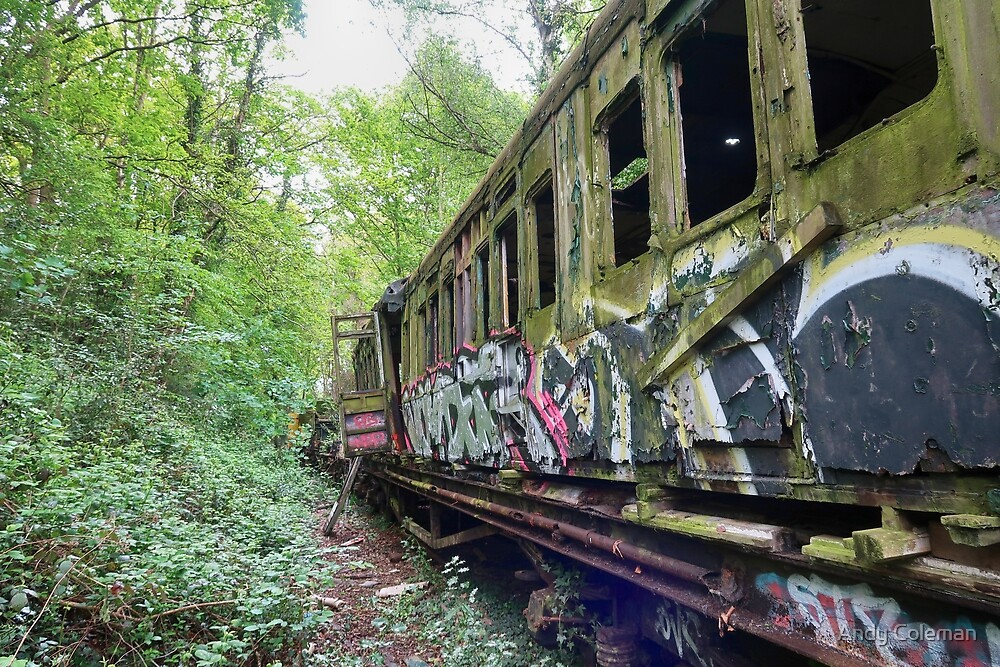 Railway Graveyard 03 by Andy Coleman