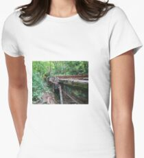 Railway Graveyard 09 Fitted T-Shirt