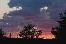 Summer Sunset (as-is) by Gene Walls