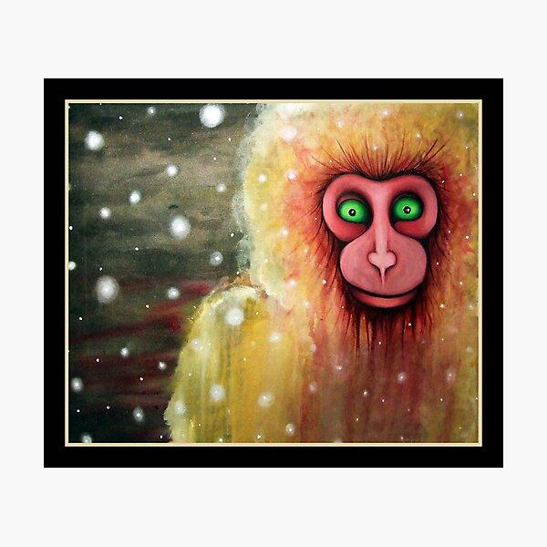 cryptozoology :the lucca snow monkey Photographic Print