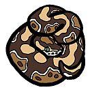 Bold Ball Python - Normal by Morgan Carpenter