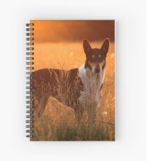 Talking 'Bout Gold Spiral Notebook