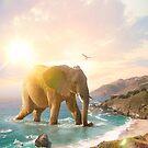 «trovilla» de soaringanchor