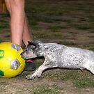 I Cn Playz Socca Too? by PhoenixArt