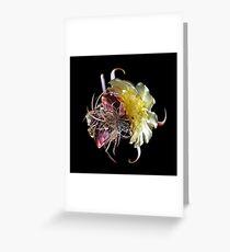 Cactus Flower LP Greeting Card