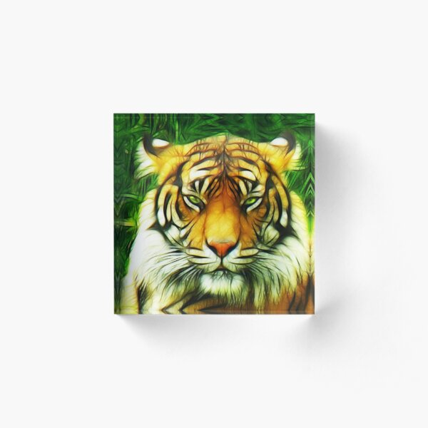 Tiger is Not Amused Acrylic Block
