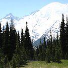 Mt. Rainier by pallyduck