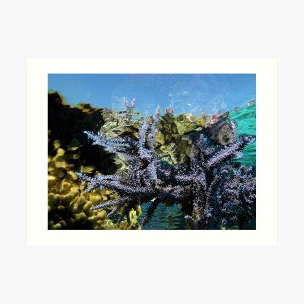 Reef Tripping Art Print