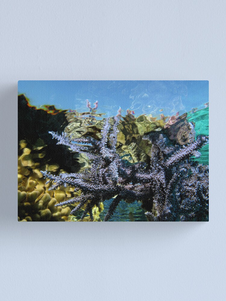 Alternate view of Reef Tripping Canvas Print