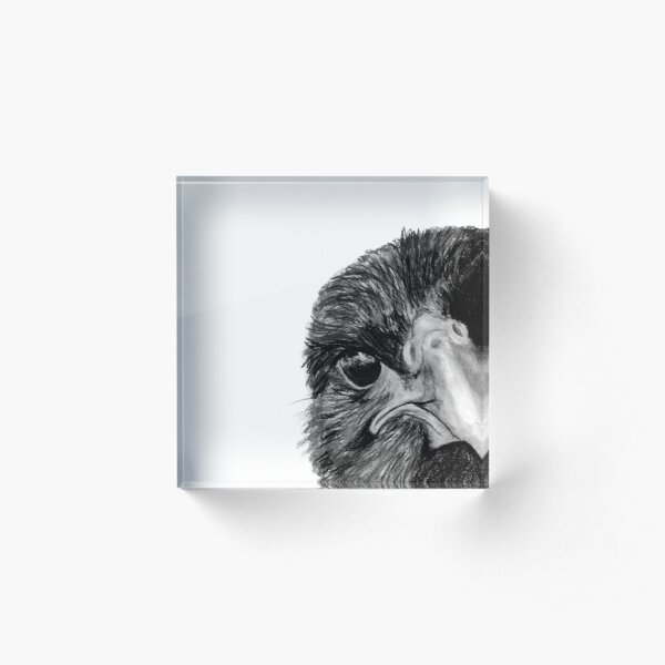 The Secret of the Raven Acrylic Block