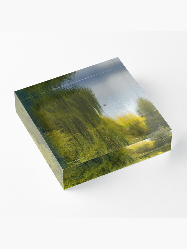 Alternate view of Reflected Willow Acrylic Block