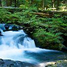 Lake 22 creek waterfall - long exposure  by aarthir