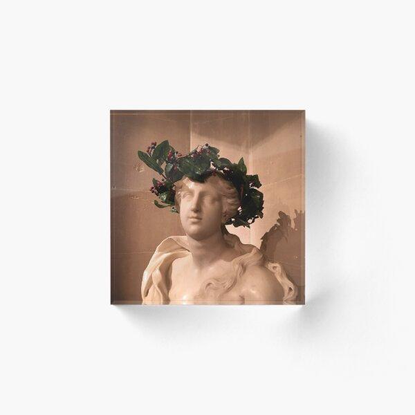 Christmas bust Acrylic Block