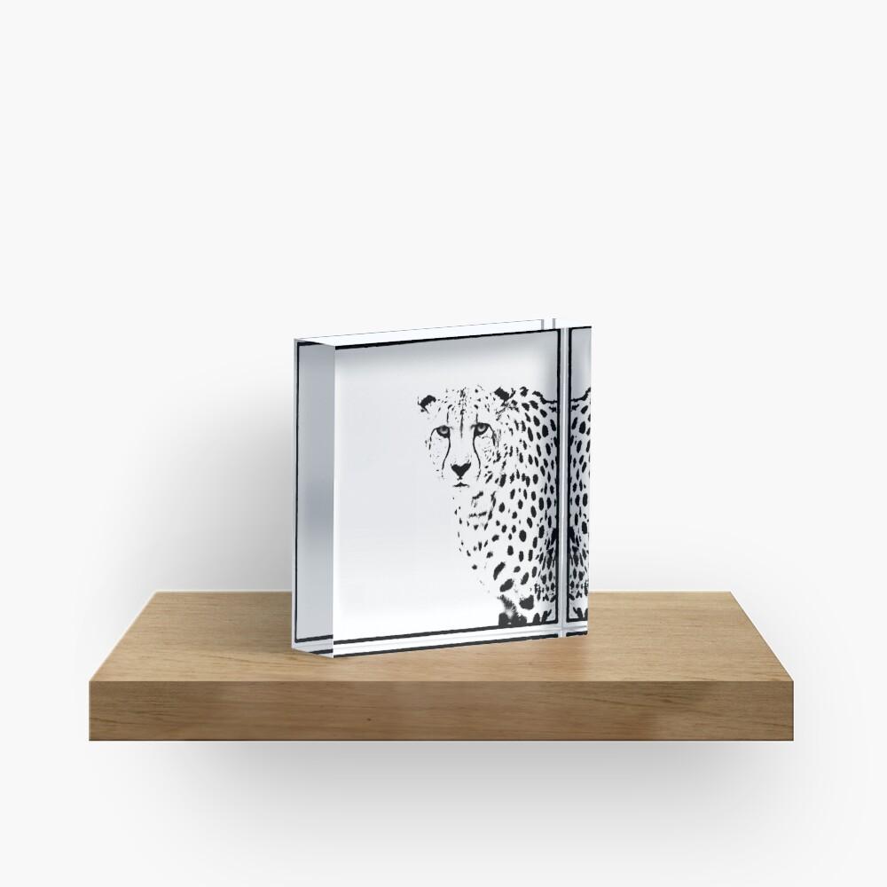 Cheetah Acrylic Block