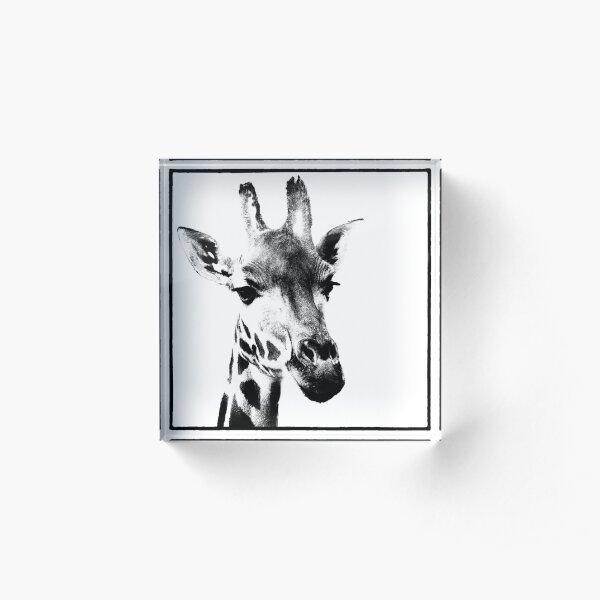 Gentle Giraffe Acrylic Block