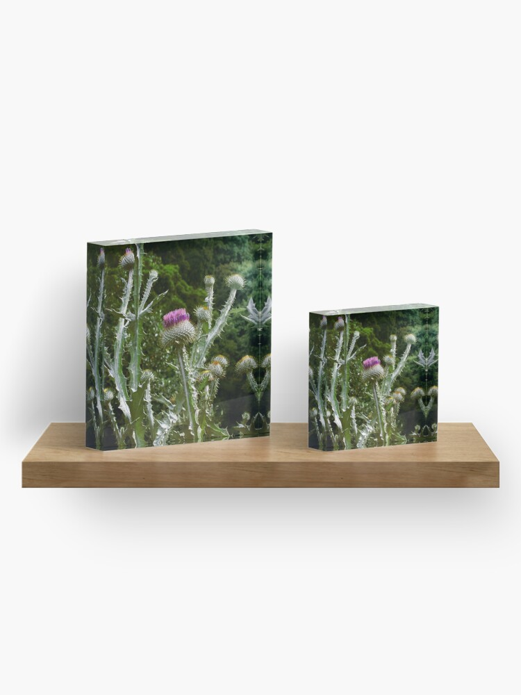 Alternate view of Thistles Acrylic Block
