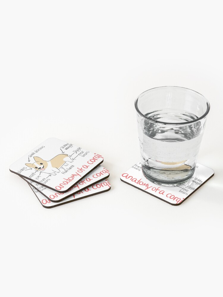 Alternate view of Anatomy of a Corgi Coasters (Set of 4)