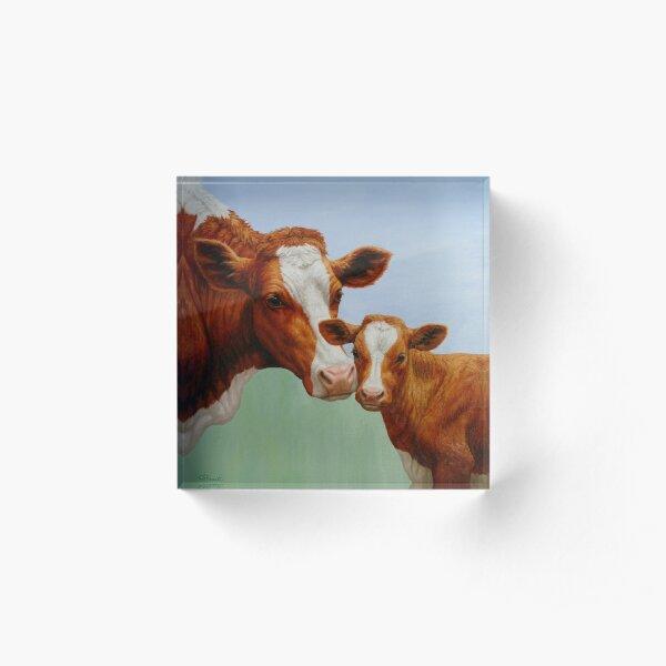 Mother Guernsey Cow and Cute Calf Acrylic Block
