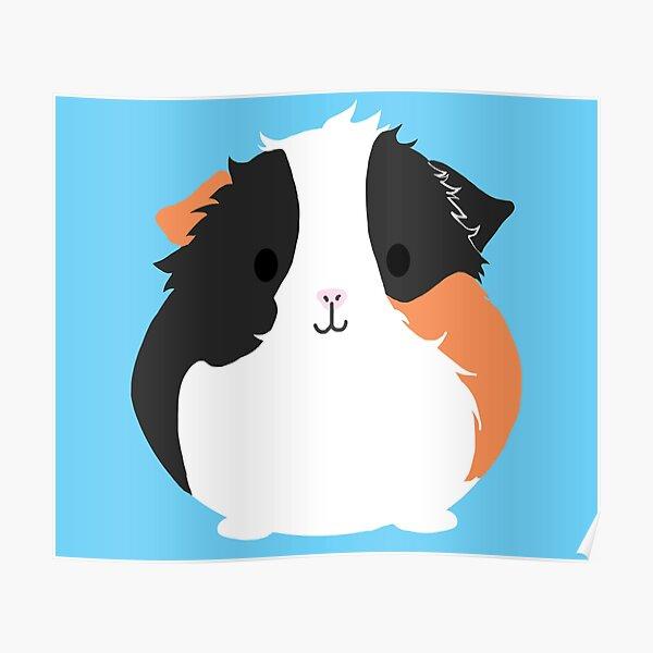 Apollo the Guinea Pig Poster