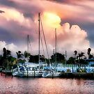 Clearwater Marina sunset by Brian Tarr