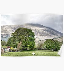 Scotch landscape Poster