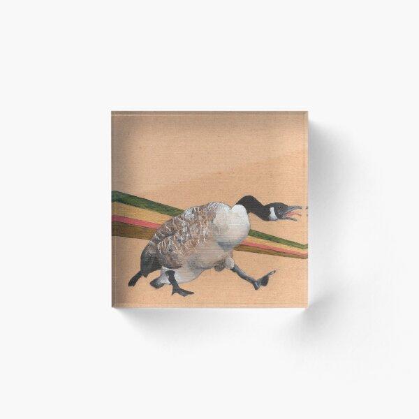 Canadian Goose Acrylic Block