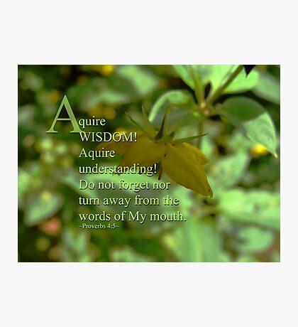 Aquire wisdom - Inspirational Photographic Print
