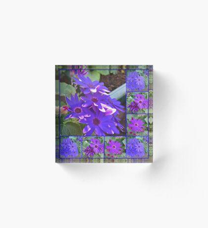 Cinerarias Dreaming - Blumencollage in Lila und Blau Acrylblock