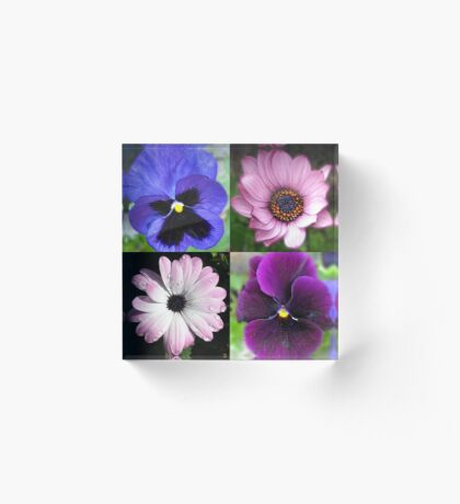 Cute Pansies and Daisies Collage Acrylblock