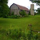 Pretty Old Barn by RandiScott