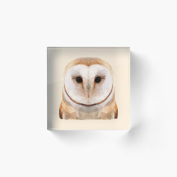 The Owl Acrylic Block