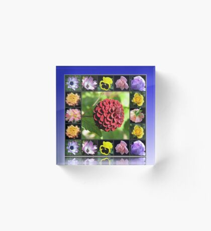 Summer Flowers Collage in Reflection Frame featuring Dahlia Acrylblock