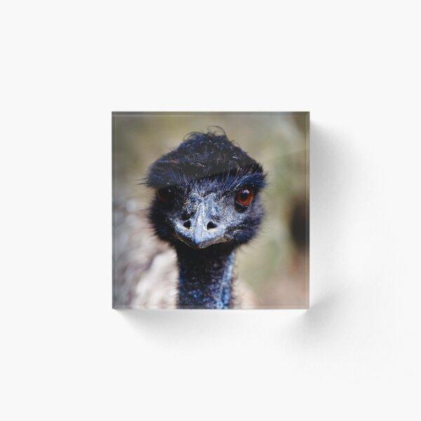 Emu Acrylic Block