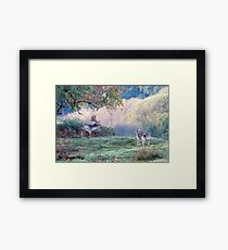 Autumn deer in the forest Framed Print