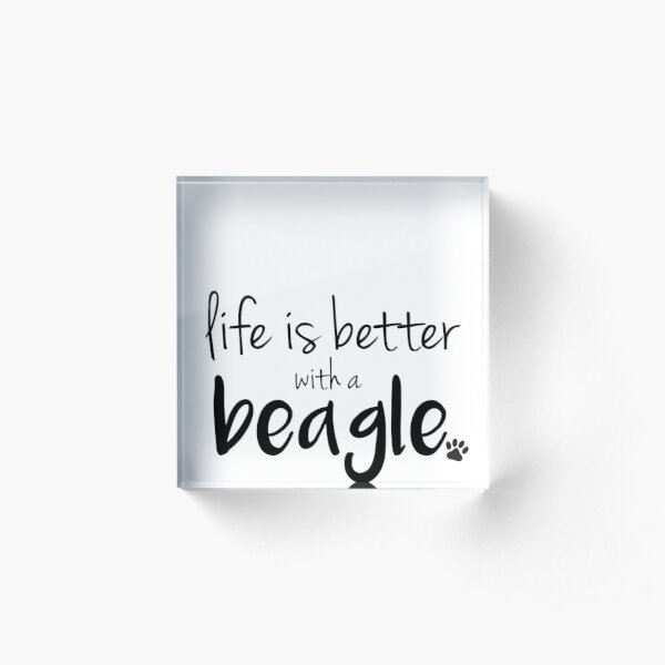 la vida es mejor con un beagle Bloque acrílico