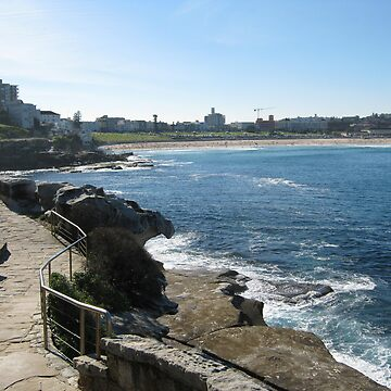 Coogee to Bondi by beast