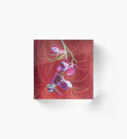 Phalaenopsis B Acrylic Block