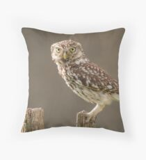 Owl on a post staring at you Throw Pillow