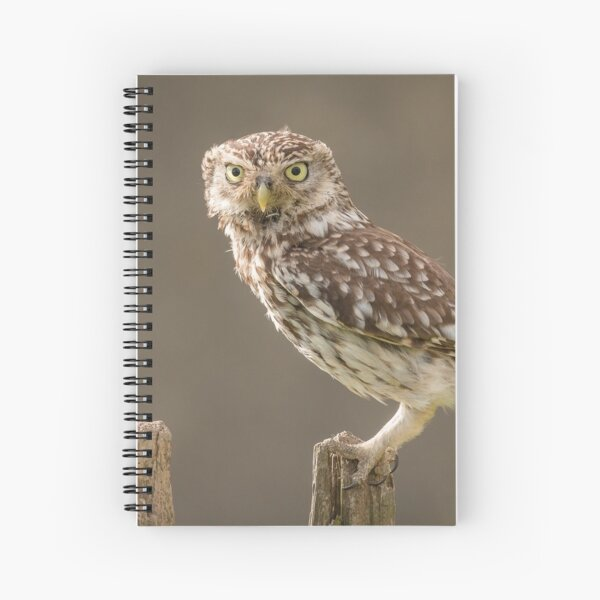 Owl on a post staring at you Spiral Notebook