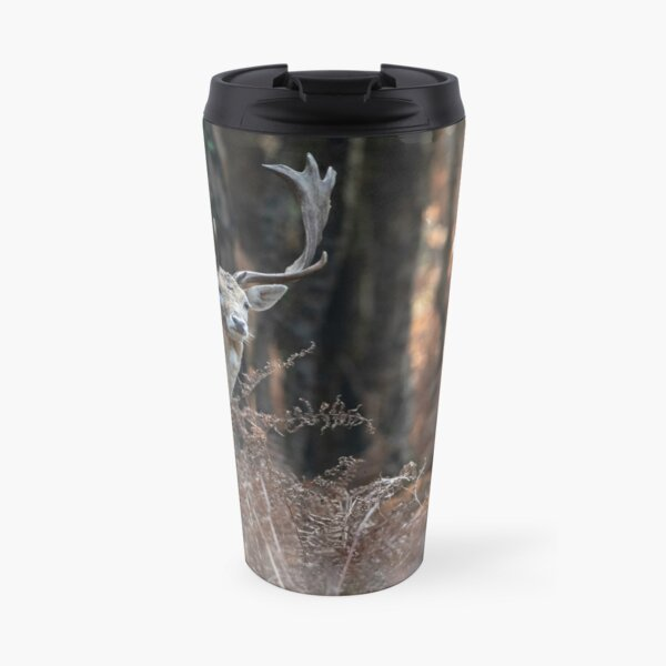 Fallow deer buck in the woods Travel Mug