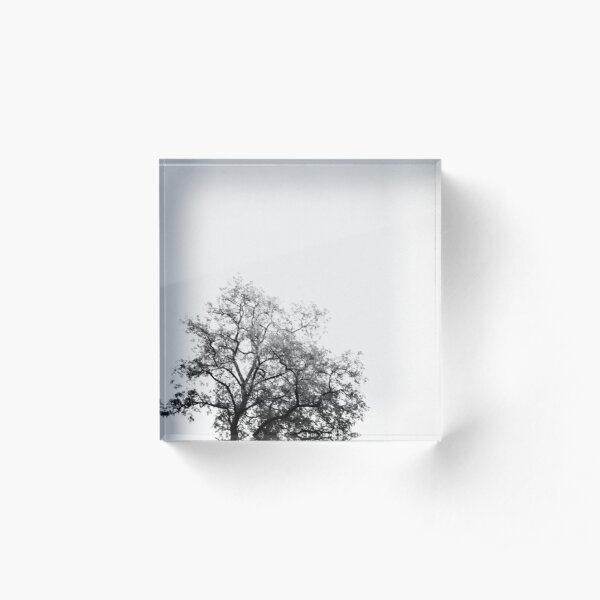 Ashes Acrylic Block