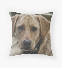 Lady (My Yellow Lab) Throw Pillow