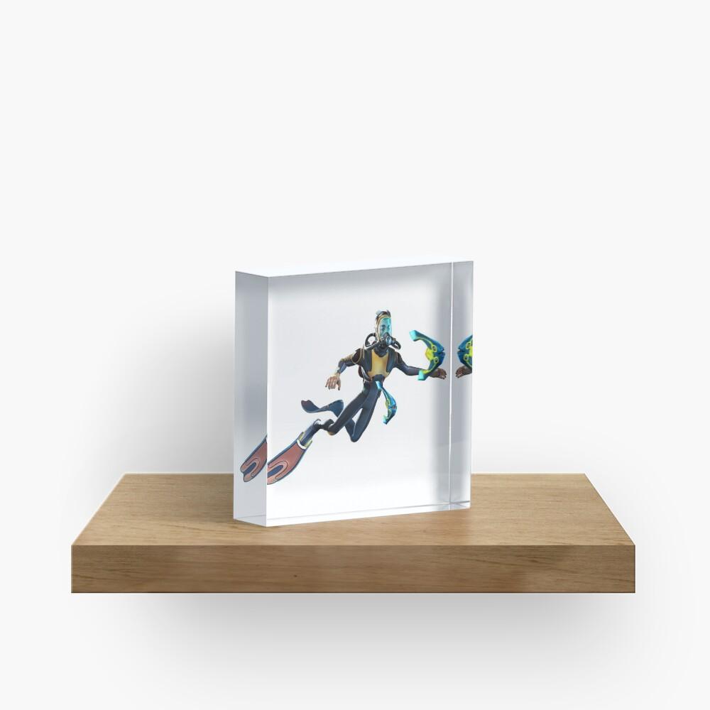 Diver Acrylic Block