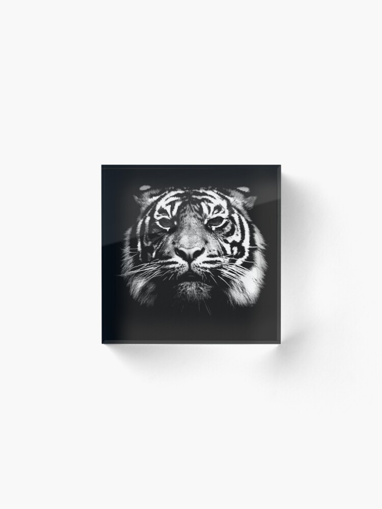Alternate view of Illustrated Tiger  Acrylic Block