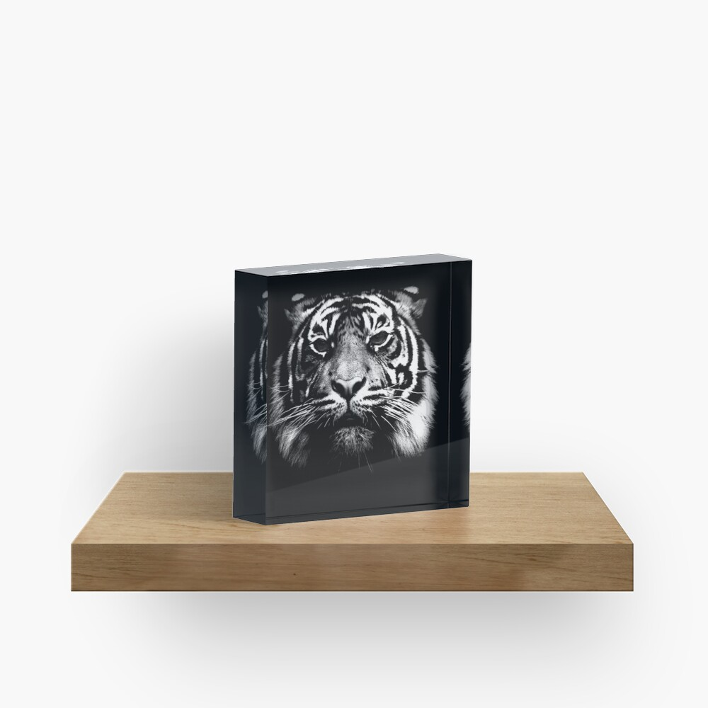 Illustrated Tiger  Acrylic Block