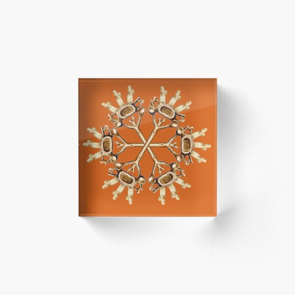 Cervical Snowflake-Rust Acrylic Block